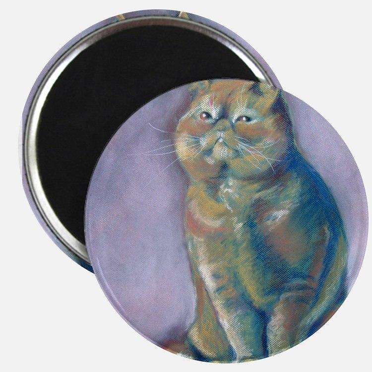 Nigel - Red Exotic Shorthair Magnet