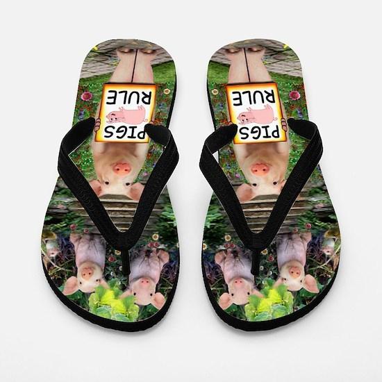 Pigs Rule Flip Flops