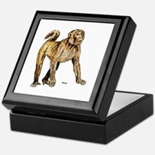 Macaque Monkey Keepsake Box