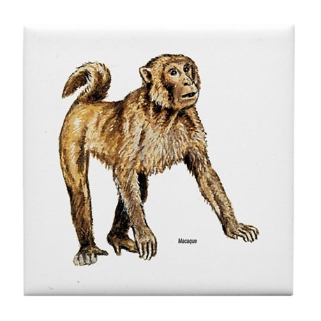 Macaque Monkey Tile Coaster