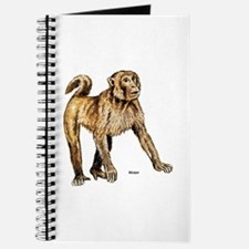 Macaque Monkey Journal