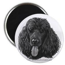 Shadow, Standard Poodle Magnet