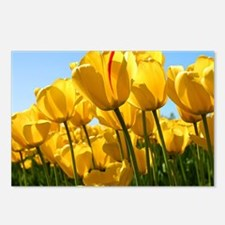 Unique Yellow tulips Postcards (Package of 8)