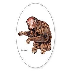 Red Uakari Monkey Oval Decal