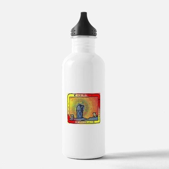 DESI Logo Water Bottle