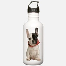 Cute French bulldog Water Bottle