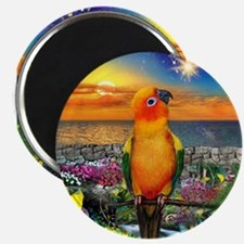 Sun Conure at Sunset Magnets