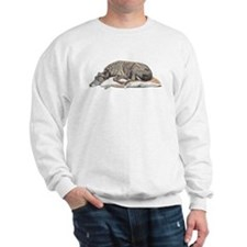 Cute Greyhound colors Sweatshirt
