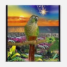 Green Cheeked Conure Star Gazer Tile Coaster
