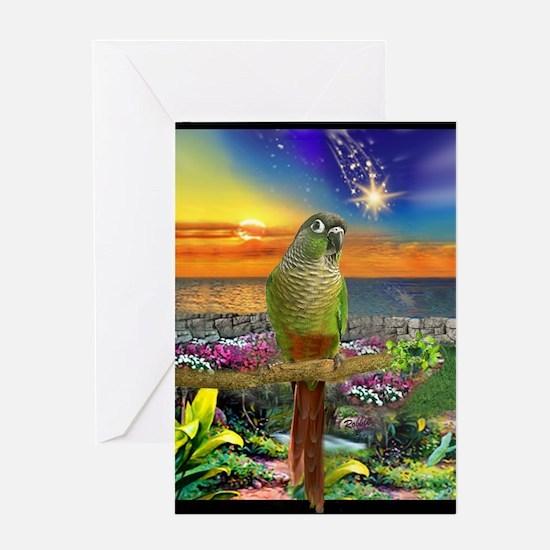 Green Cheeked Conure Star Gazer Greeting Cards