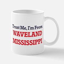 Trust Me, I'm from Waveland Mississippi Mugs