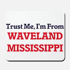 Trust Me, I'm from Waveland Mississippi Mousepad