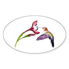 Hummingbird in flight Decal