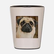 Pug-What! Shot Glass