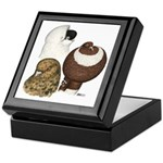 Three Pigeons Keepsake Box