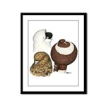 Three Pigeons Framed Panel Print