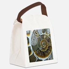 Cute Fossils Canvas Lunch Bag