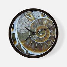 Cute Fossil Wall Clock