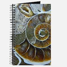 Ammonite Journal