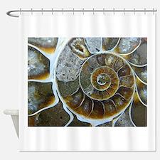 Ammonite Shower Curtain