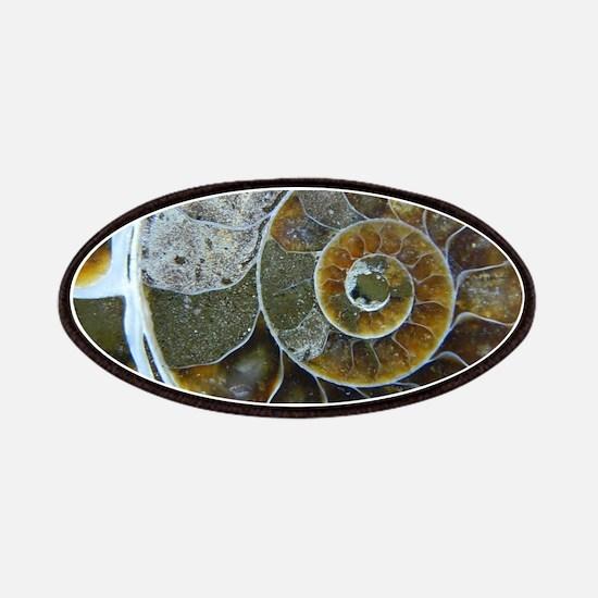 Ammonite Patch