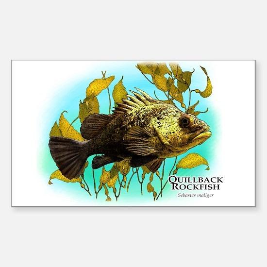 Quillback Rockfish Sticker (Rectangle)