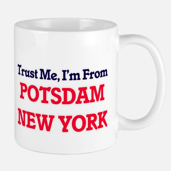 Trust Me, I'm from Potsdam New York Mugs
