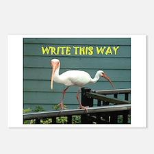 Both Ways Bird Postcards (Package of 8)