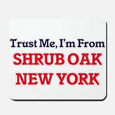 Trust Me, I'm from Shrub Oak New York Mousepad