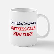 Trust Me, I'm from Watkins Glen New York Mugs