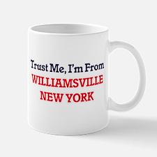 Trust Me, I'm from Williamsville New York Mugs