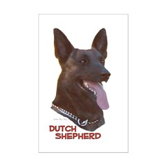 Dutch Shepherd Posters