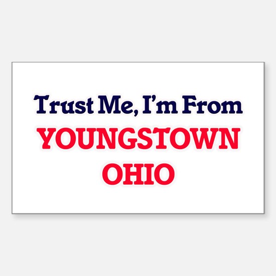 Trust Me, I'm from Youngstown Ohio Decal