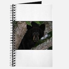 black bear in tree Journal