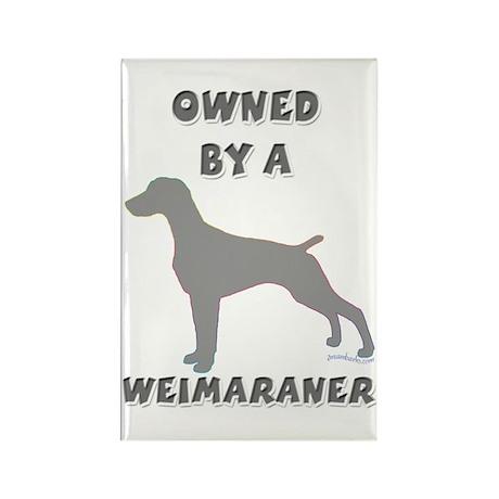 Weimaraner Pewter Rectangle Magnet (10 pack)