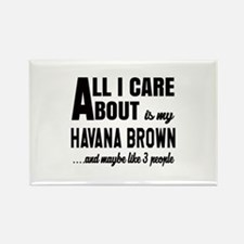 All I care about is my Havana Bro Rectangle Magnet