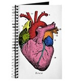 Anatomy Journals & Spiral Notebooks