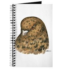 Modena Pigeon Journal