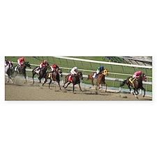 Helaine's Horse Race 2 Bumper Bumper Sticker