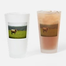 Solitary Sheep Drinking Glass