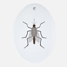 Mosquito Oval Ornament