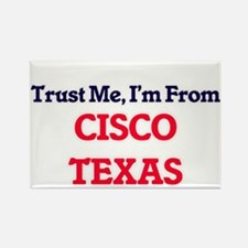 Trust Me, I'm from Cisco Texas Magnets