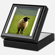 Lonely Sheep Keepsake Box