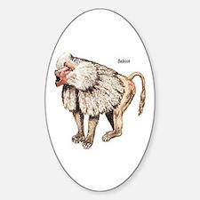 Baboon Monkey Ape Oval Decal