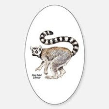 Ring-Tailed Lemur Oval Decal