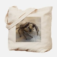 Jumping Spider Snacking Tote Bag