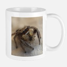 Jumping Spider Snacking Mugs
