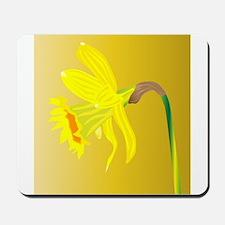 Welsh Daffodil For Saint Davids Day Mousepad
