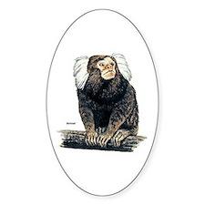Marmoset Monkey Oval Decal