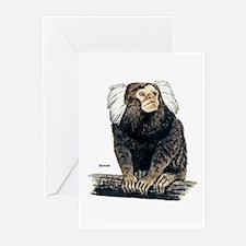 Marmoset Monkey Greeting Cards (Pk of 10)